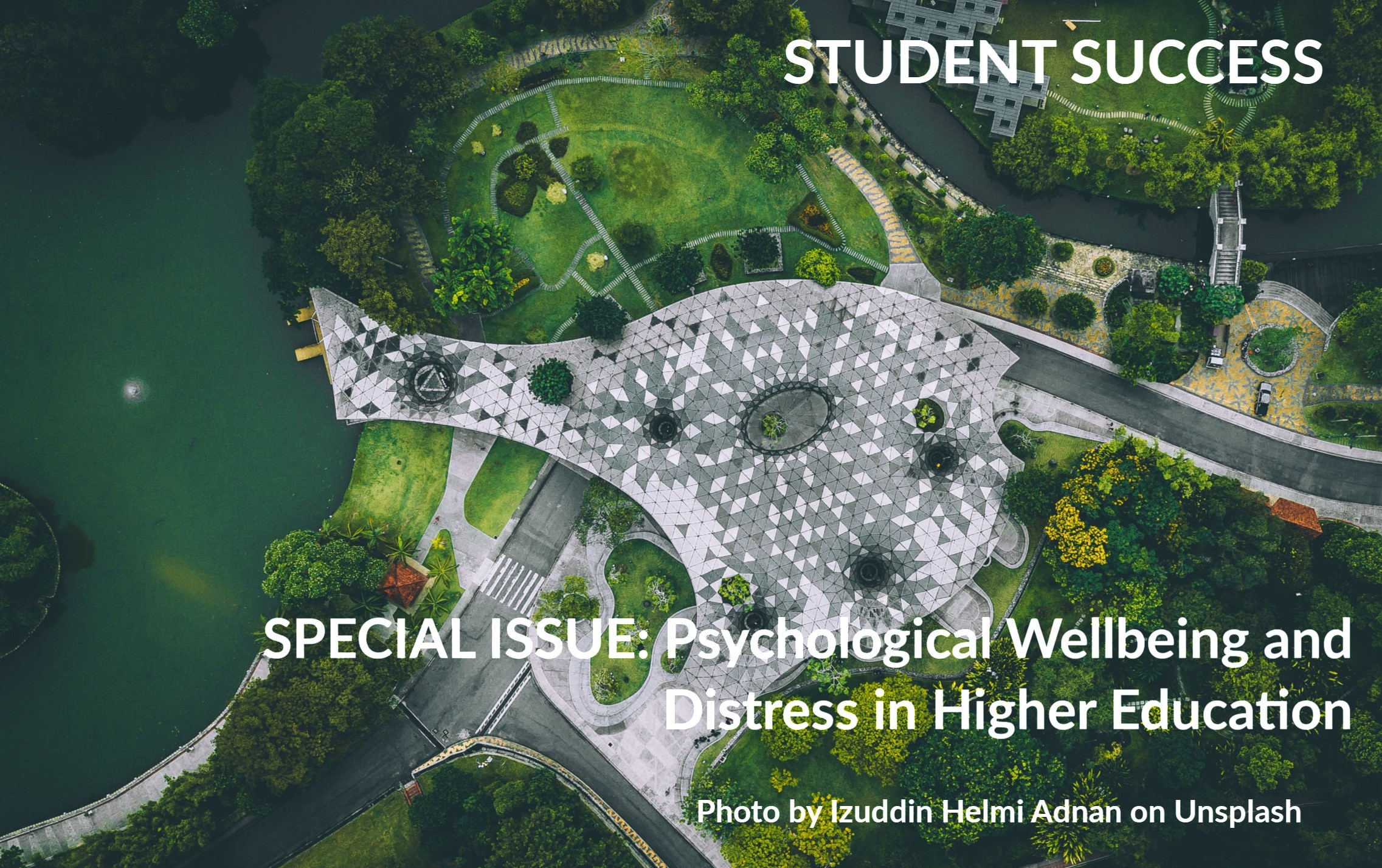 2019 Special Issue:  Psychological Wellbeing and Distress in Higher Education